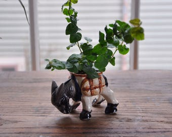 Occupied Japan Ceramic Donkey Planter