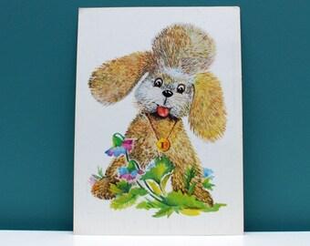 Vintage  postcard , greeting postcard, poodle post card,  USSR postcards , soviet postcard , Retro postcard C0018