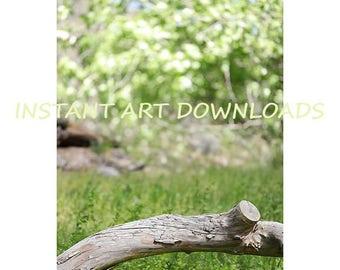 Photo Digital Backdrop Background Studio Prop 120 x 80 inches Sitting Log Instant Art Downloads Green Grass Fine Art Photography Prop Nature