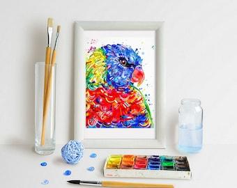 Rainbow Lorikeet Art Print - Lori