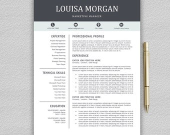 professional resume template for word 1 and 2 page resume template cover letter - Resume Template Professional