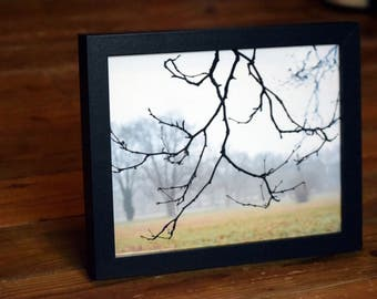 FRAMED Wintry Tree Photographic Print - 10x8