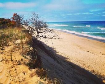 Marconi Beach 2015