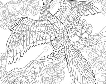 dinosaur velociraptor adult coloring book page zentangle. Black Bedroom Furniture Sets. Home Design Ideas