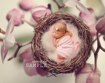 orchid bird nest newborn digital background/ newborn digital backdrop/instant download