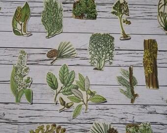 28 Piece Vintage Forest Greens Sticker Set