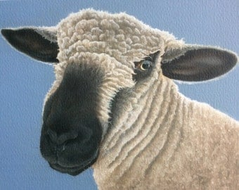 Myfanwy the sheep painting