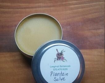 Plantain (Plantago major) Salve - 1 Ounce Tin