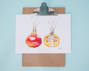 Rosehip Art Print, Realistic Art