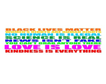 Kindness is everything bumper sticker, black lives matter, women's rights are human rights, no human is illegal, love is love decal