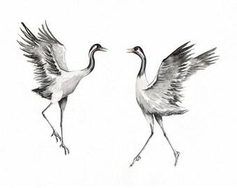 Dancing Cranes - Print from an Original Drawing