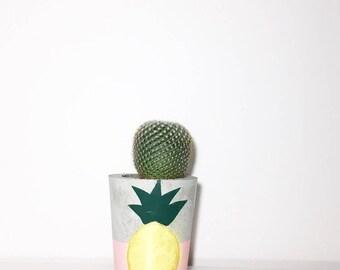 Pineapple Cement Planter