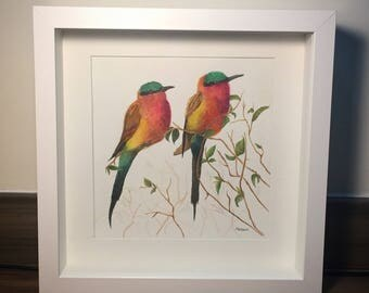 painting in watercolor, carmine bee-eater