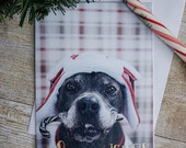 Warm Wishes and Be Merry 5x7 Pit Bull Christmas Card