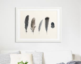 Feather Collection Fine Art Print for a Modern Home // Compliments simple lines and neutral decor // Large Feather Prints - Collection 2