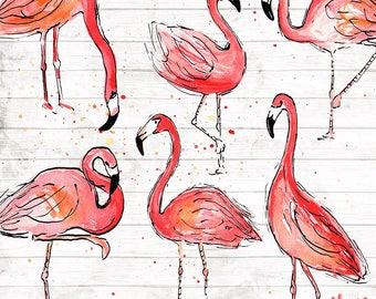 Flamingo Clipart Clip Art Commercial Use - Vector Graphics - Flamingos Digital Clip Art - Digital Images - Flamingo Art Download - ACGA01