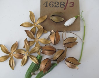 6 Vintage Brass  Large Climatis Or Tulip  Flowers .. Wonderful Flat Or Form Into A Tulip Shape