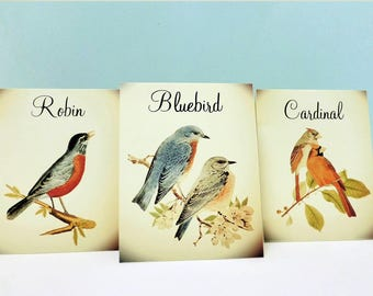 Vintage Wedding Table Numbers, Vintage Bird Table Tent Cards with Bird Names, Bird Illustrations, Bird Theme, Table Tents, Table Numbers