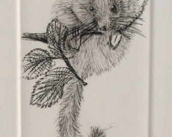Hand printed cute little mouse. Drypoint Dormouse. Warm black Artist Proof.