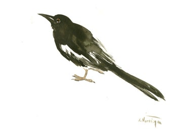 Magpie  wall art, Magpie, Original watercolor, 12 X 9 in, Magpie painting, illustration, bird art, yardbirds