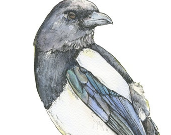 Magpie PRINT: Heavyweight art Print from Watercolour/fine liner original/ unframed