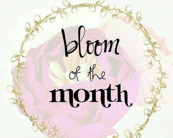 Bloom of the Month Club, Monthly Box, Monthly Subscription, Christmas Present, Gifts for Her, Paper Flowers, Paper Peonies, Monthly Flowers