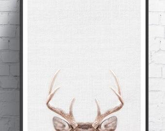 Animal Decor, Printable Art, Home Decor, Nursery Decor, Woodland Animals, Woodland Nursery, Animal Print, Deer Poster, Deer Head