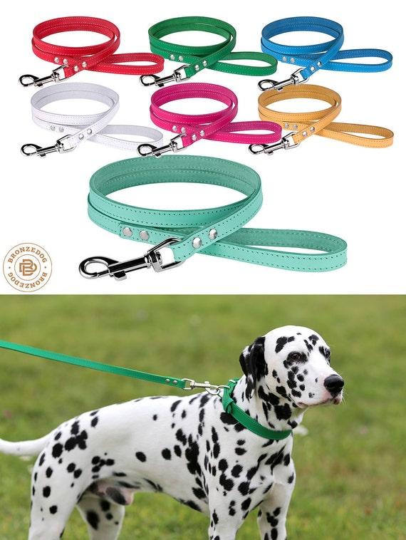 Dog Leash, Leather Dog Leash, 4 foot Dog Leash