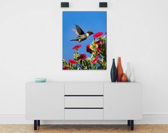 Canvas Wall Art, Hummingbird Art, Humming bird, Stretched Canvas, Hummingbird Wall Art, Bird Photography, Canvas Art, Hummingbird Picture