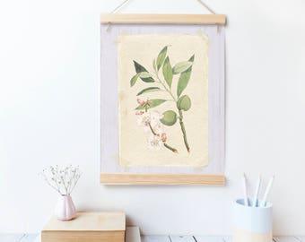 Printable art, botanical print, vintage print, printable, print at home art.