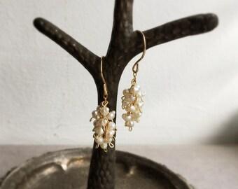Fresh water pearl cluster earrings gold fill