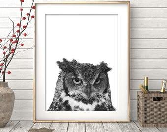 Owl Print, Woodlands Nursery Decor, Wilderness Wall Art, Printable Owl Poster, Black White and Grey, Gender Neutral Kids Room, Animal Photo
