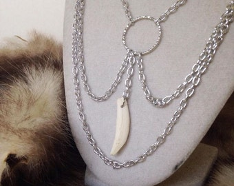 Opossum tooth necklace