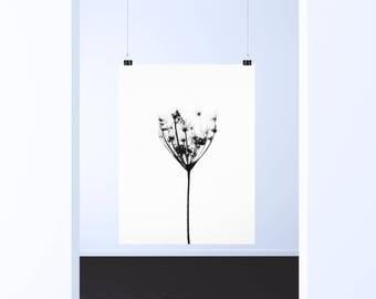 Minimalist flower poster