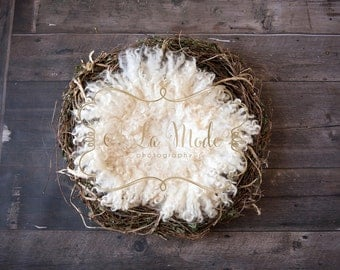 Newborn Digital Photography Background Twig Wreath Ivory Felt Curls Wood Floor