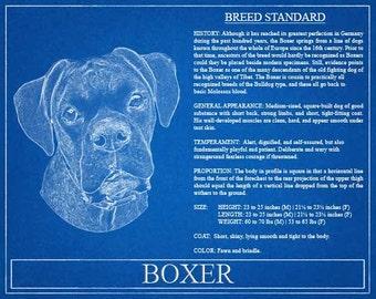 Boxer Portrait / Boxer Art / Boxer Wall Art / Boxer Print / Boxer Gift