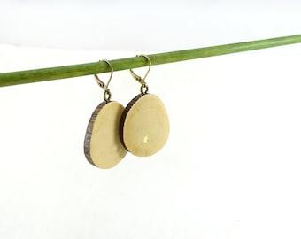Wood slices earrings, simple wooden earrings in fig wood slices