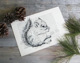 Dictionary art print, Squirrel print, Woodland animals, Woodland nursery, Wall decor, Book art, Recycled paper, Dorm decor, Gift under 15