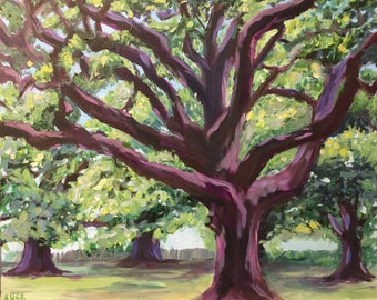 Live Oaks - Acrylic on 24x20 canvas - Original Painting