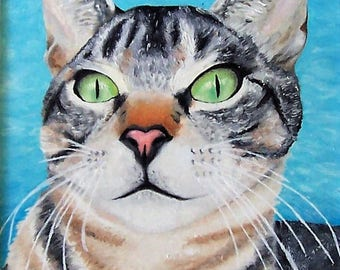 Green- Eyed Tabby Cat