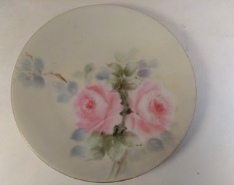20% OFF, Hand Painted Plate, Vintage Hand Painted Floral Plate, Pink Rose Floral Plate, Floral China Plate