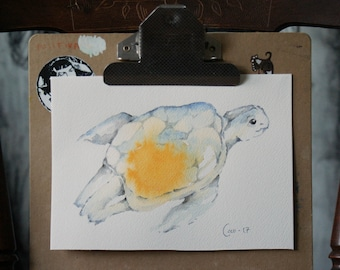 Turtle, Original Watercolor painting