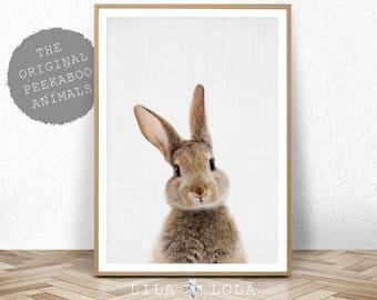 Rabbit Print Wall Art, Nursery Animal Decor, Woodland Animal, Digital Download, Large Poster, Woodland Baby Shower, Bunny, Forest Animal