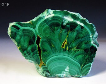 Exquisite Gem Hard Rare Bisbee Copper Queen Region Malachite Rough Specimen 150g - Fantastic Banding - More Bisbee Rocks Here!