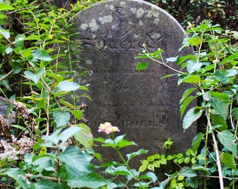 Old Tombstone Photograph, Gravestone Wall Art, Large Art Print, Charleston SC Photograph, Southern Garden, Charleston Print, FREE SHIPPING