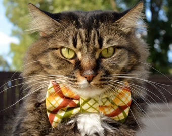 Plaid cat bow tie for Fall, fall cat collar, plaid cat collar, Autumn cat collar, cat collar, tie, bow tie for cats, kitten collar
