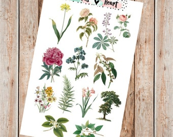 Vintage floral illustration planner stickers