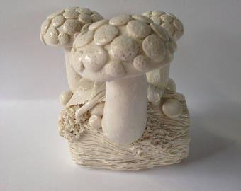 3 1up fungi