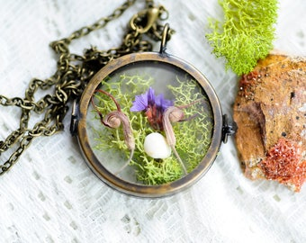 Terrarium jewelry, Moss locket, real flower necklace,statice, botanical jewelry,nature inspired,boho jewelry, gift for her