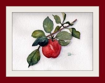 Original Painting - watercolour - Apple Branch - Size 30x40